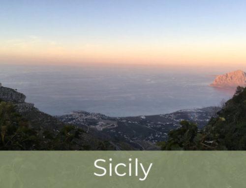 Kite trip to Sicily