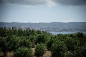 sardinija_kitehouse-22